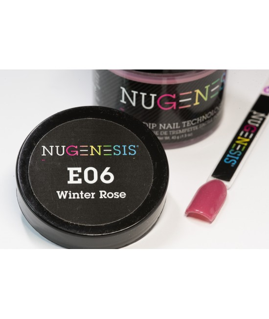 E06 WINTER ROSE